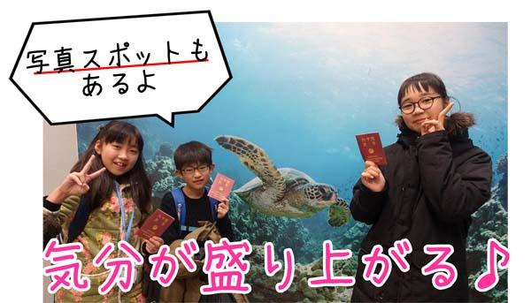 ウミガメと一緒に記念撮影する子どもたち